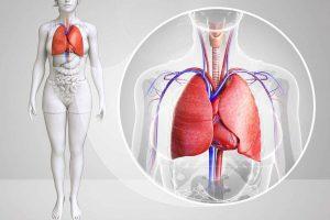肺癌靶向药阿法替尼如何服用才好?